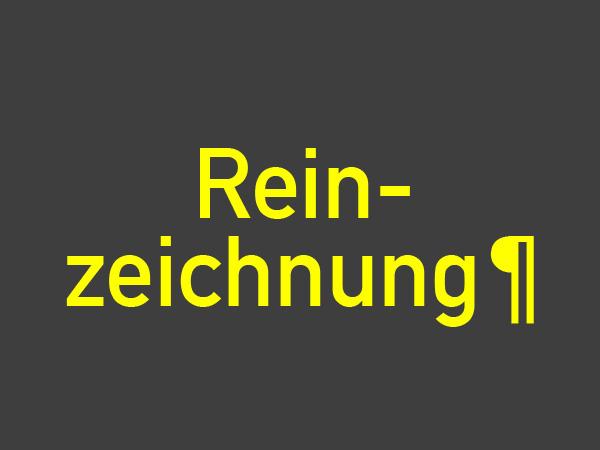 Reinzeichner/in